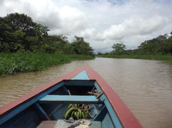 Along the Ucayali and Yarapa